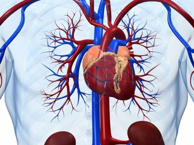 Ефективне лікування серцево-судинних захворювань