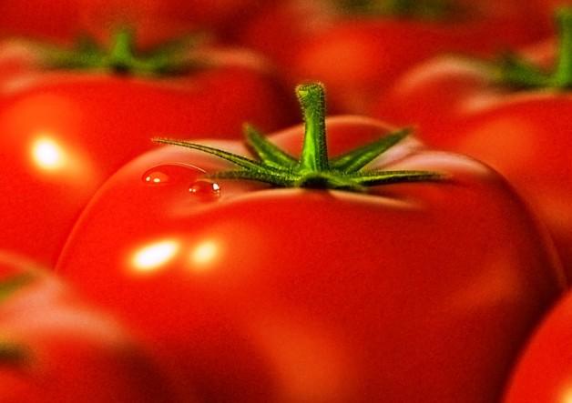 Чим корисні томати