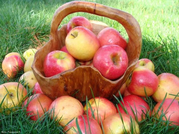 Одне яблуко в день знижує холестерин
